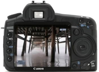 Canon EOS 40D DSLR SLR w/ Sigma DC 17-70 mm Lens rental